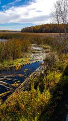 Lake Superior & Mississippi Railroad Fall Color Tour
