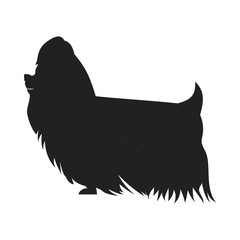 Yorkshire Terrier Vector Black SSilhouette