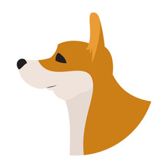 Dog head corgi pembroke welsh