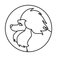 Dog head in a linear style