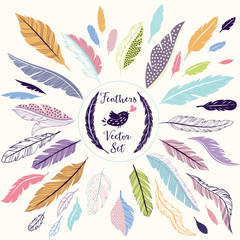 Wall Mural - Set of vector feathers for your design