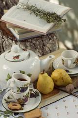 Garden picnic , tea set and a book