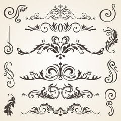 Calligraphic design elements and page decoration. Vector set to embellish your layout