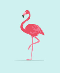 Vector illustration pink flamingo. Exotic bird. Cool flamingo decorative flat design element.