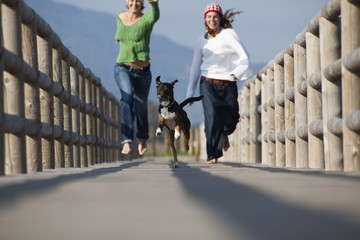 Two Women Running With A Dog
