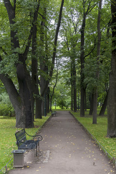 A Tree Lined Path With A Bench; St. Petersburg, Russia