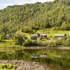 Houses in valley beside tree covered hill and tranquil water, Bergen, Norway