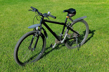 Black mountain bike standing on a green lawn