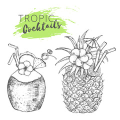 Tropic cocktails sketch. Hand-drawn coconut and pineapple cocktails.