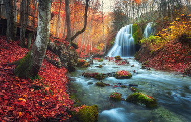 Obraz Autumn forest with waterfall at mountain river at sunset. Colorful landscape with trees, stones, waterfall and vibrant red and orange foliage. Nature background. Fall woods. Beautiful blurred water - fototapety do salonu