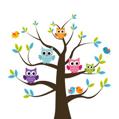 Wall Murals Owls cartoon Vector set of colorful owls and birds on the tree on a white background