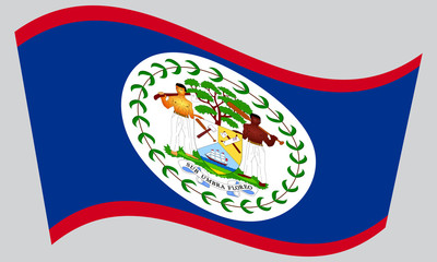 Flag of Belize waving on gray background