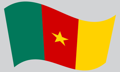 Flag of Cameroon waving on gray background