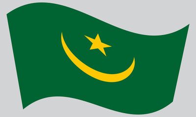 Flag of Mauritania waving on gray background