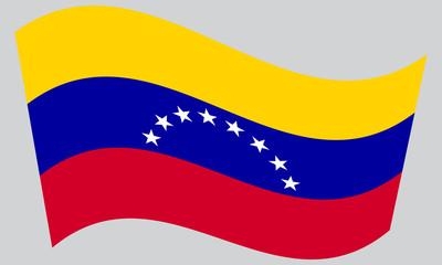 Flag of Venezuela waving on gray background