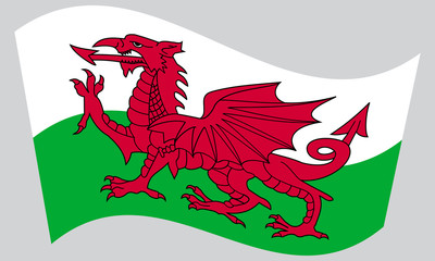 Flag of Wales waving on gray background