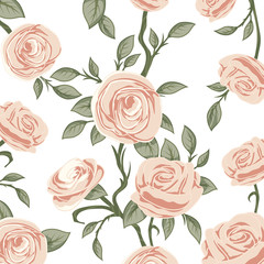 Illustration background pattern rose