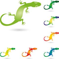 Echse, Salamander, Gecko, Tier, Logo