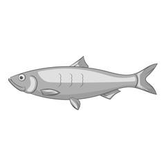 Fish icon. Gray monochrome illustration of fish vector icon for web
