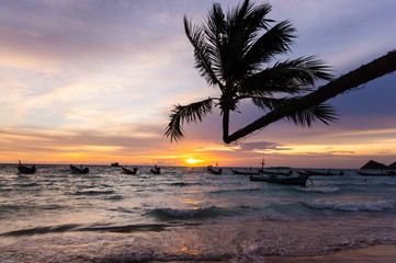 Beautiful sunset by the beach. Silhoette of coconut tree at Tao Island, Thailand. Romantic vacation getaway.