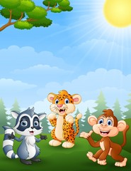 Raccoon, tiger and monkey cartoon in the jungle