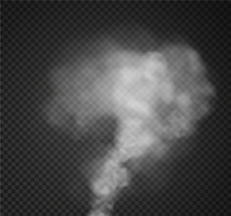 Fog or smoke isolated transparent special effect. White vector cloudiness, Vector illustration
