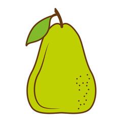 pear fresh fruit isolated icon vector illustration design