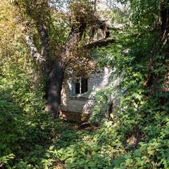 Chernobyl houses
