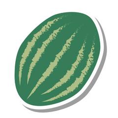 watermelon fresh fruit isolated icon vector illustration design
