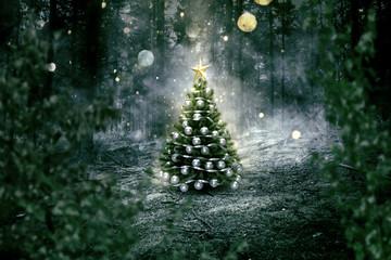 Weihnachtsbaum steht einsam im Wald