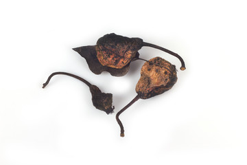 Dried pears on a white background