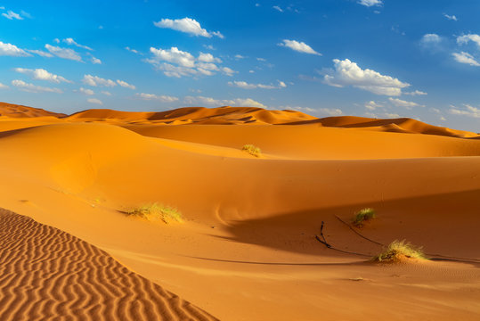 dunes of sahara at erfoud in morocco