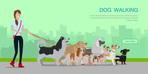 Dog Walking Banner. Woman Walk with Different Dogs