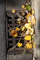 Kanaldeckel mit gelben Herbstlaub