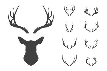 Deer s head and antlers set.