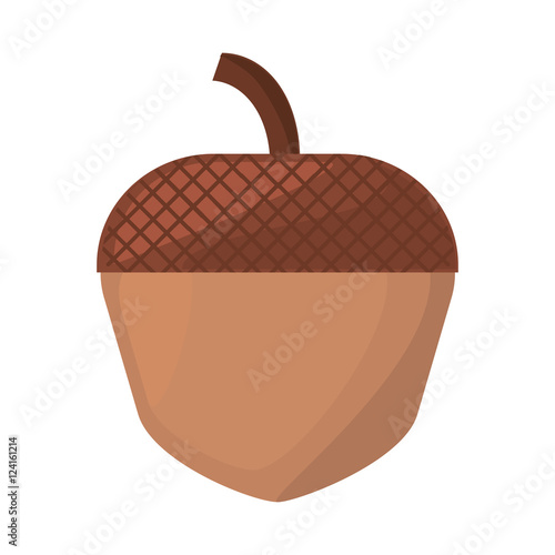 maple seed isolated icon vector illustration design
