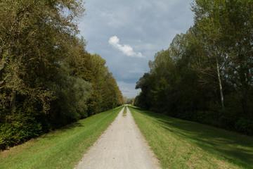 Rheinaue Plittersdorf