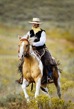 Lonely Cowboy With Old Fashioned Mustache Rides His Beautiful Horse Through A Colorful Field Of Wildflowers; Seneca, Oregon, United States Of America