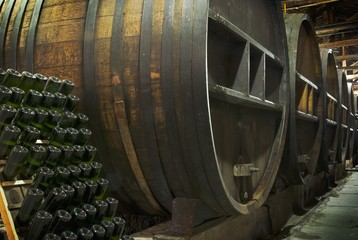 Oak Barrels In A Winery; Mendoza, Argentina