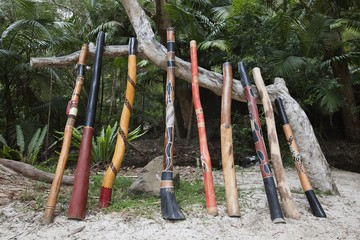 A Variety Of Didgeridoo Lined Up And Leaning Against A Tree Branch; Queensland, Australia
