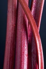 Stocks Of Rhubarb With Water Drops; Calgary, Alberta, Canada