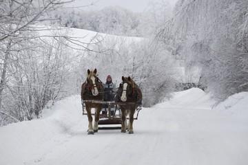 A Horse Drawn Sleigh Ride Through The Snow; Cowansville, Quebec, Canada