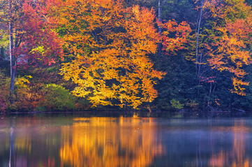 Libby lake in late autumn; Austin, Quebec, Canada