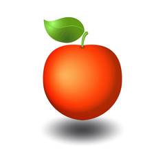 Red apple with shadow vector illustration with realistic gradient effect.