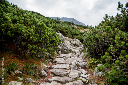 Narrow Mountain Path