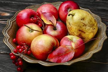 Apples in vase for fruits