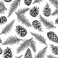 Pine cone and fir tree seamless pattern. Botanical hand drawn ve