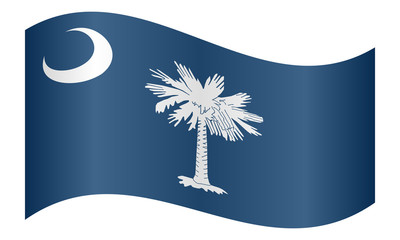 Flag of South Carolina waving on white background