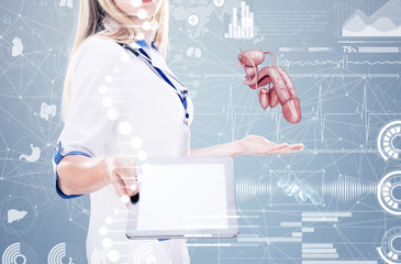 Double Exposure Doctor holding human organs ( penis) and tablet , gray background.