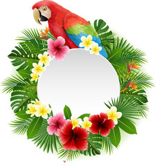 Cute parrot with blank sign on plant background